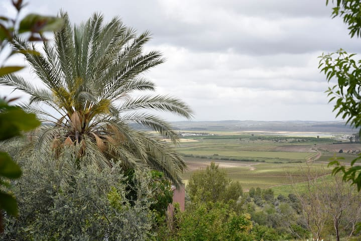 Countryside House in Neve Shalom