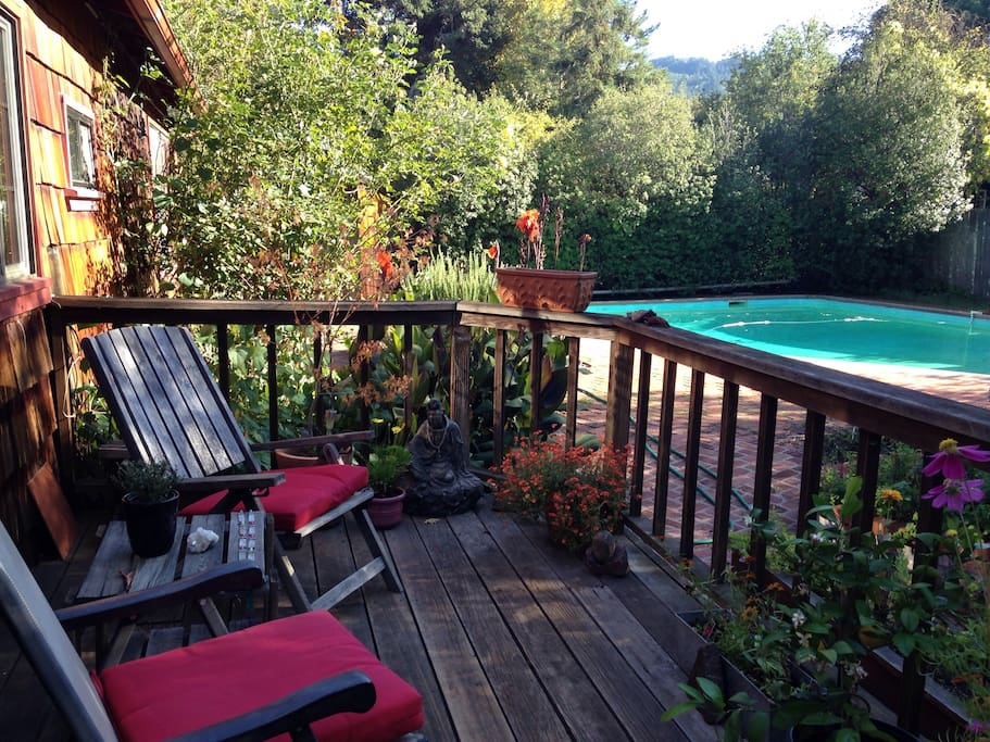 Back porch with pool ( not heated)