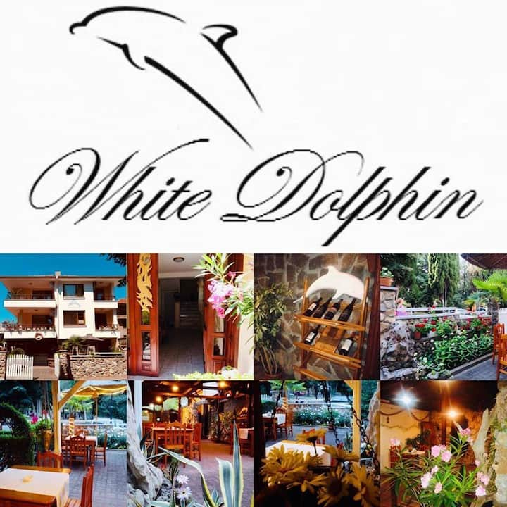 Guest House White Dolphin - Double Room 2
