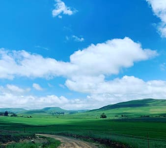 Galaxyvlei , come experience a piece of our galaxy