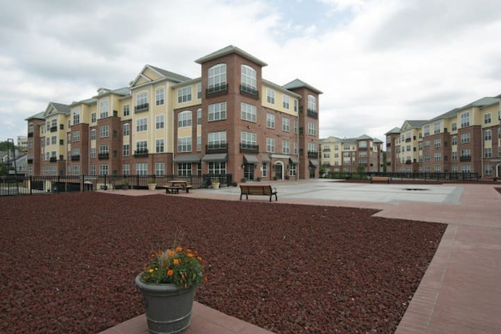 Westville Appartments - New Haven - Condominium
