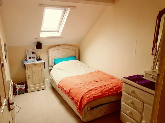Cozy single Victorian attic bedroom - Newcastle upon Tyne - Haus
