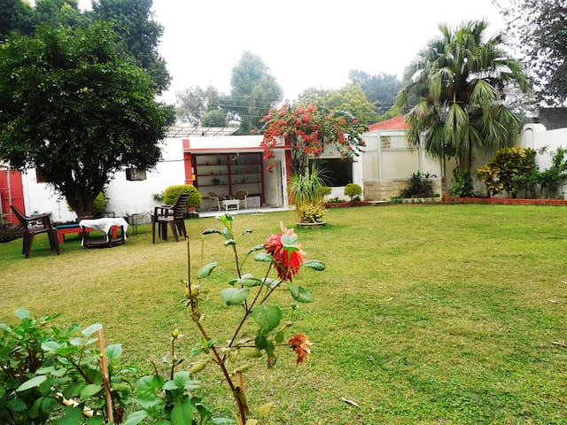 Green serene homely abode Meerut India.