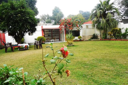 Green Serene Homely Abode at Meerut