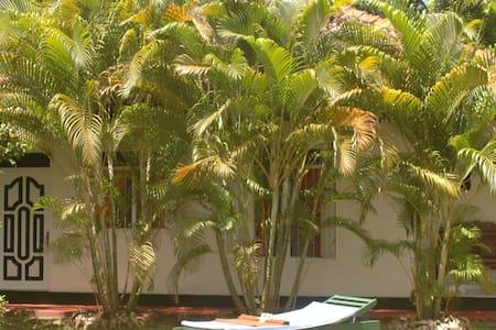 Ceylon Village - Induruwa.Bentota