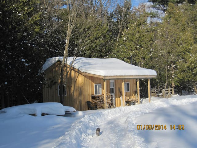 Peaceful Cabin in the Meadow - Kawartha Lakes - Srub