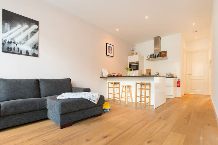 Lovable apartment in The Pijp (south-side center)