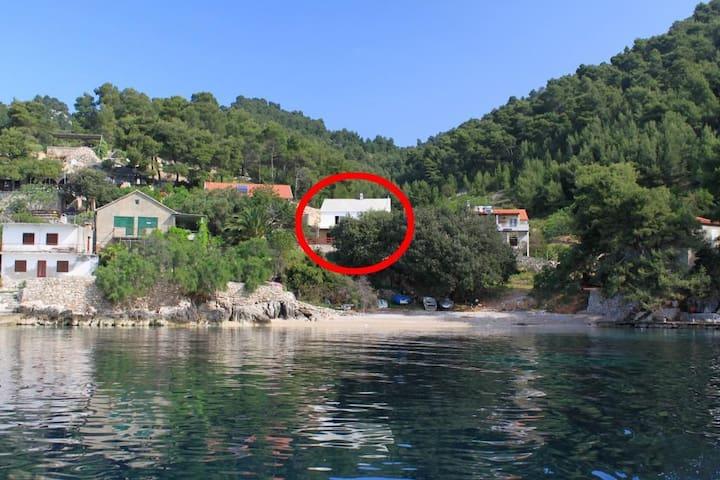 Two bedroom apartment near beach Cove Rapak bay - Rapak (Hvar) (A-8767-b)