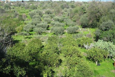 Casa Fahnenberg - San Pietro Clarenza - Villa