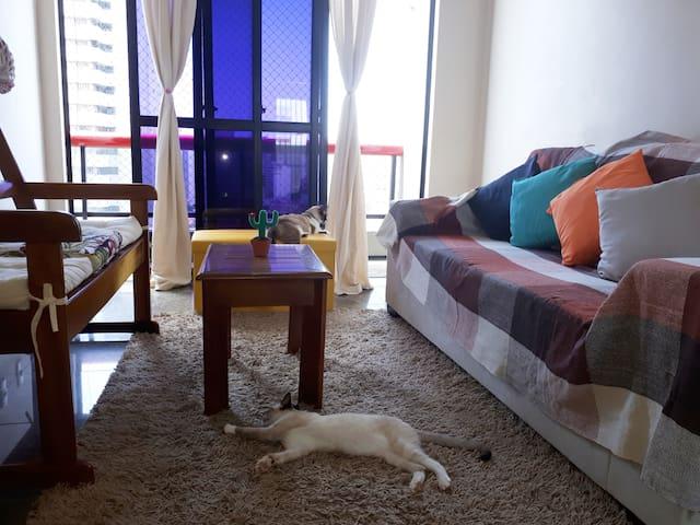 Nossa sala, lugar preferido dos nossos gatinhos(+q filhos).