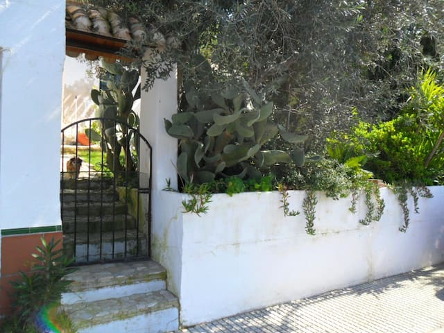 Casa Rosa Rural country House - almedinilla