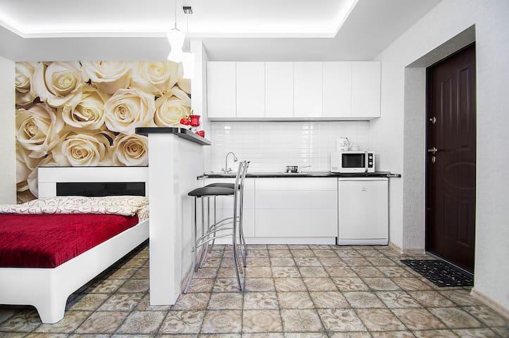 "Guest house ""Rodnikoviy"" Studio"