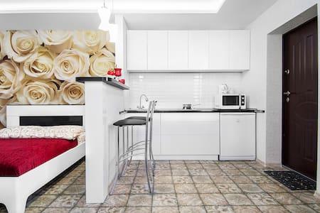 "Guest house ""Rodnikoviy"" Studio - Brest"