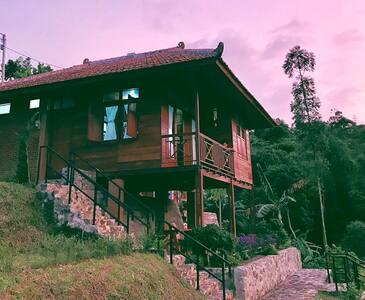 Kia Ora Lodge - Villa Cokelat
