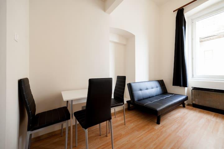 Cozy apartment in the center (e2)