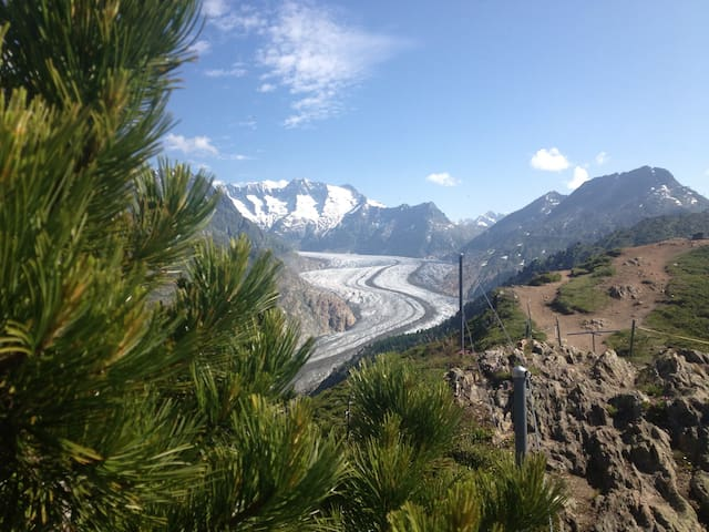Alphütte , Traumhaftes Bergpanorama - Riederalp - Chalupa
