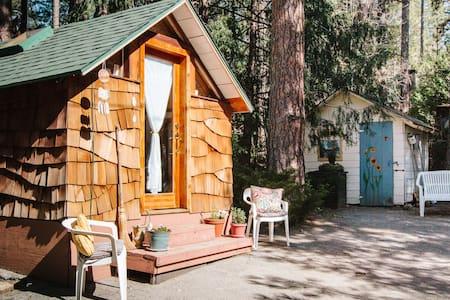 Artistic Mountain Cottage