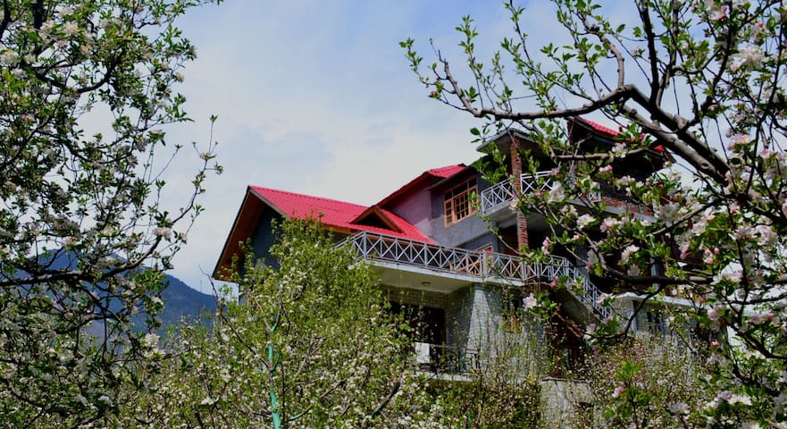 Bharhka Luxury - manali - Apartment