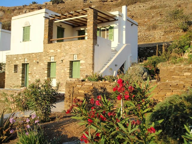 Dafni Traditional Apt. of Cyclades - Tinos - Apartamento