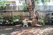 Old Backyard