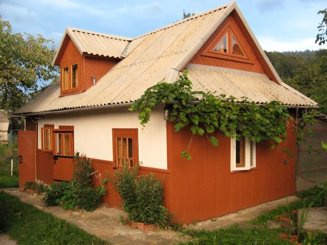 Cozy Carpathian cottage