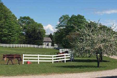 Equestrian Estate Cottage *Pets Welcome *