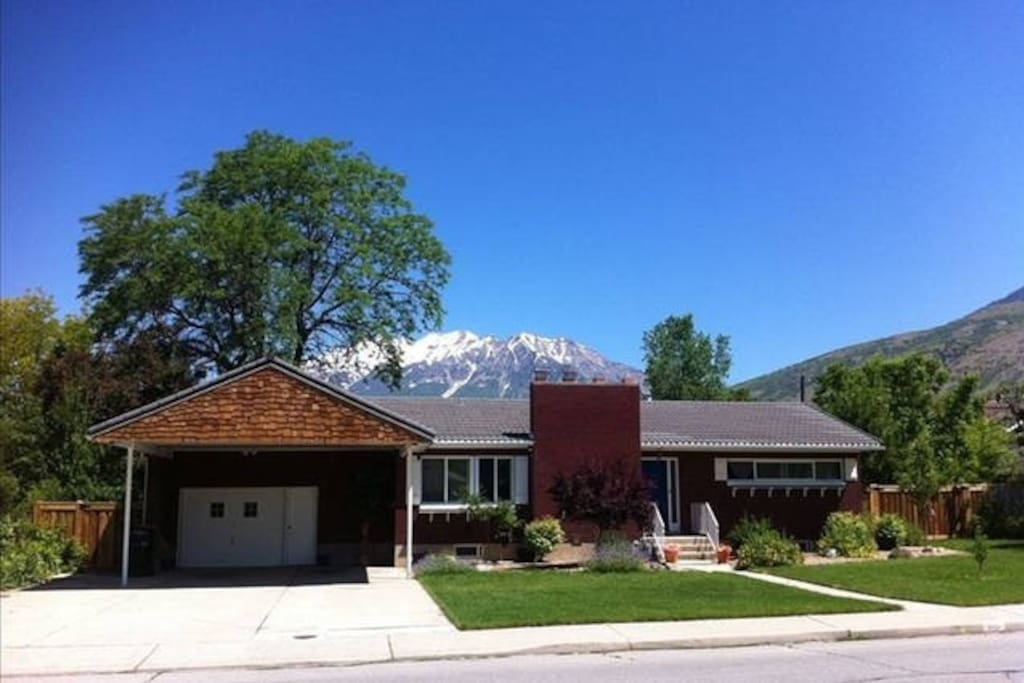 large home and yard with views houses for rent in provo