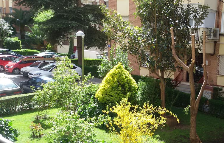 All rooms overlook the gardens. This is what I see from my window :)
