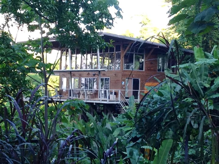 Mountain Jungle Home w/ Ocean View.  Must rent 4x4