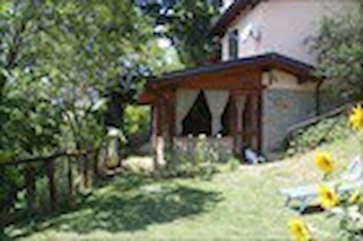 Casetta con giardino e piscina