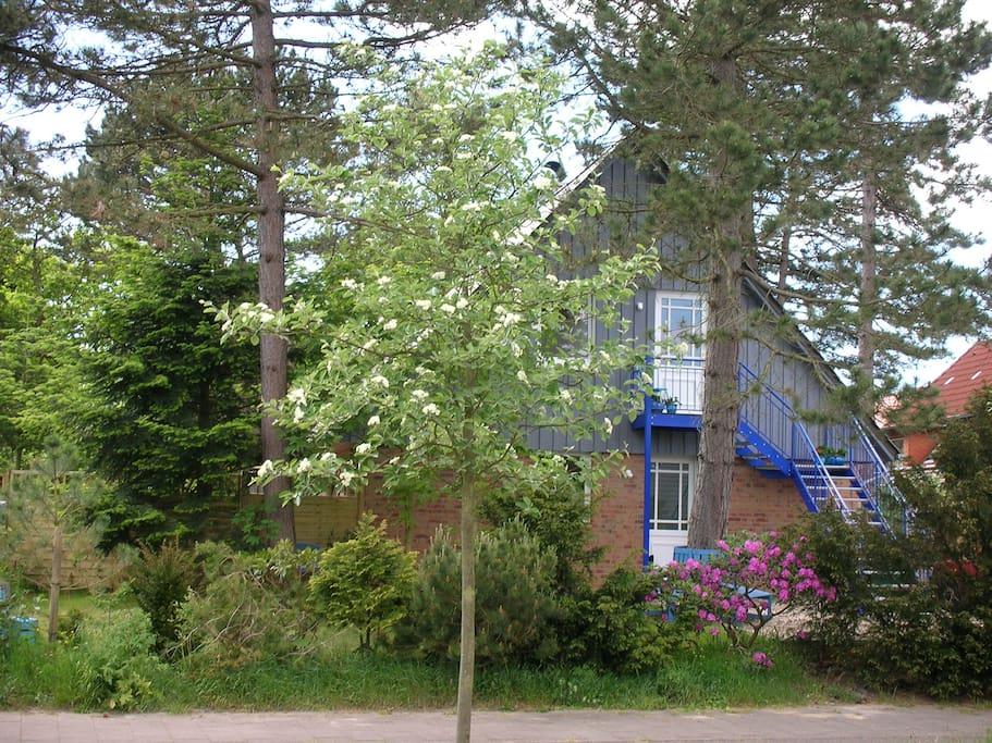 Mitten im Grünen - das Ferienhaus mit dem Loft im ersten Stock