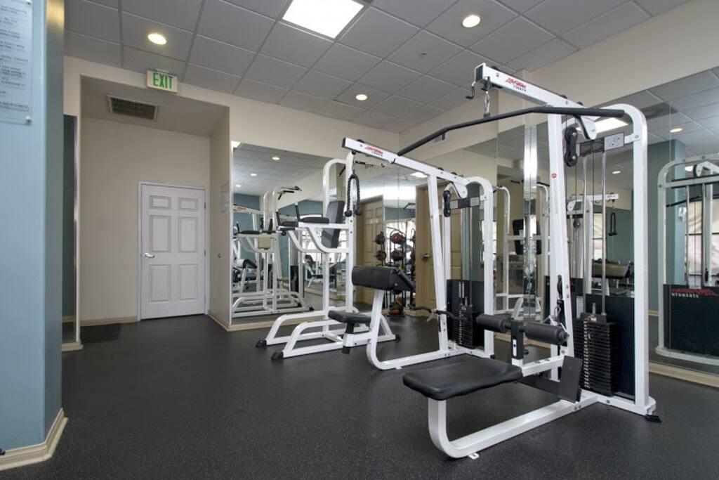 Full gyu, machines, free weights, cardio machines, TVs