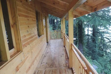 Mid conifer cottage no 6