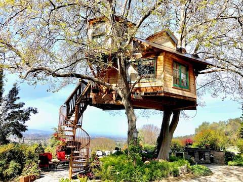 Treehouse , San Jose