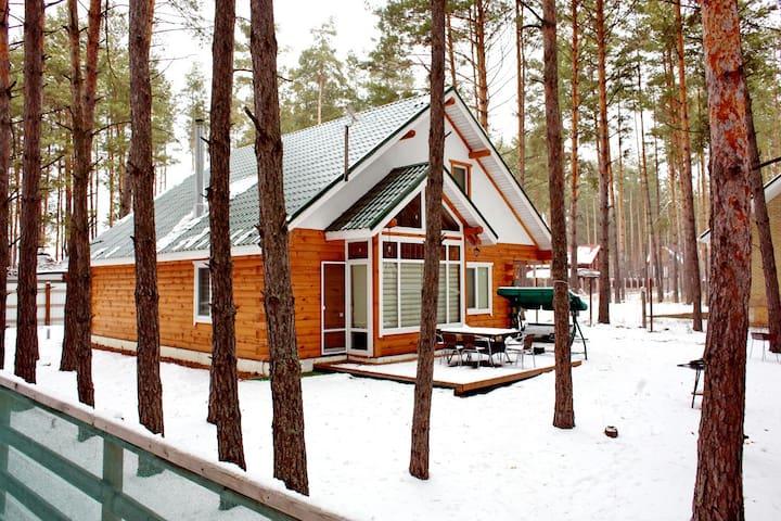 Деревянный коттедж в лесу - Voropaiv - Dom