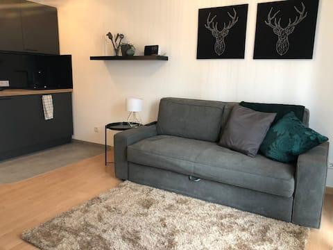 Apartment Mila - whole flat with kitchen near fair