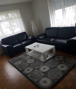 2 Room flat near Basel/2 Zimmer Whg - Münchenstein - 公寓