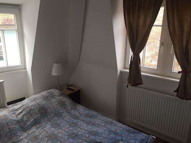 Very fine and central room - Neckargemünd - Wohnung