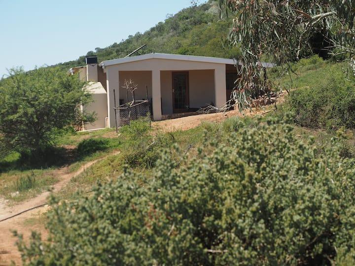 Pure Nature Familodge-Owl House