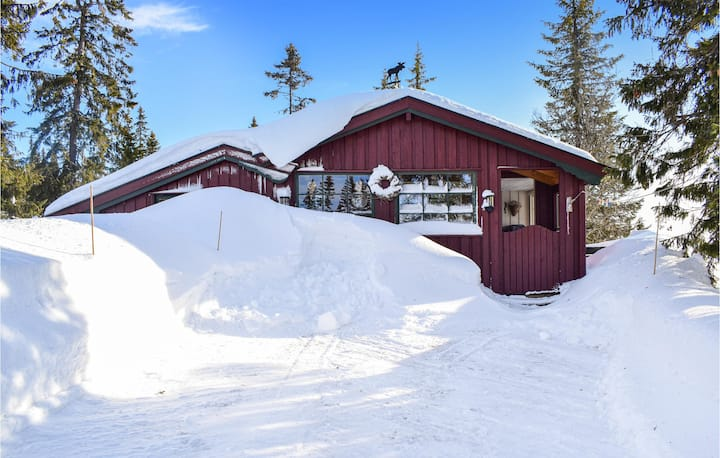 Awesome home in Sjusjøen with Sauna and 3 Bedrooms