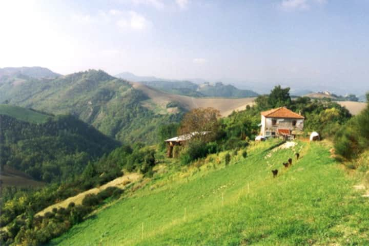"""Double """"NOBLESSE""""  in beautiful Montefeltro Area"""