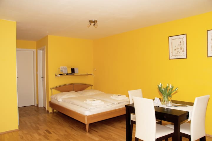 New, privat garden, free parking, free Wifi - Salzburg - Lägenhet