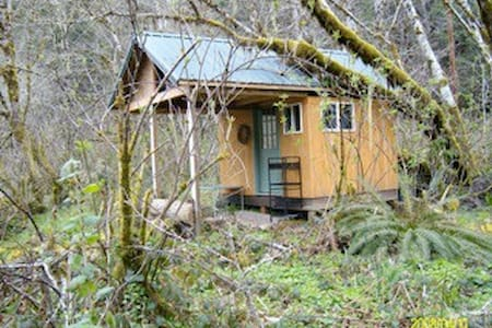 COHO CABANA: Camp Cabin on Creek - Walton - Cottage