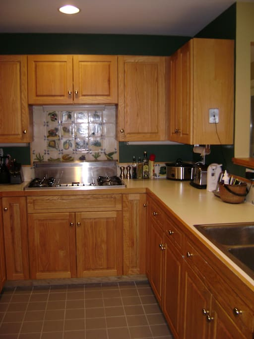 Kitchen area with gas stove