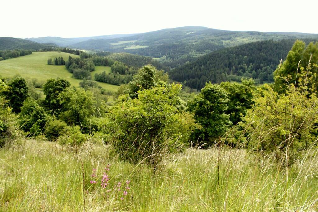 Výhled na okolní přírodu / View to surrounding nature