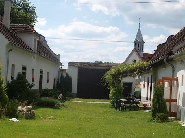 Wunderschöne Ferienwohnung auf ehem. Bauernhof - Chvaletice - Apartament