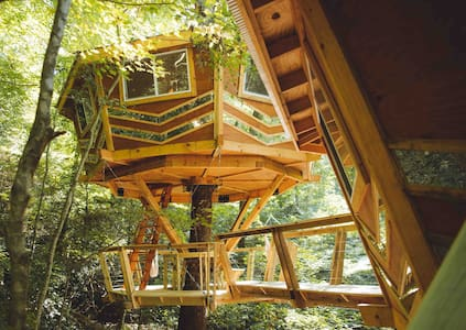 The Looking Glass, Brand New Treehouse in RRG