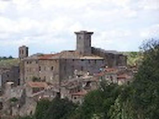 Nella quiete del borgo medioevale - Faleria - Huis