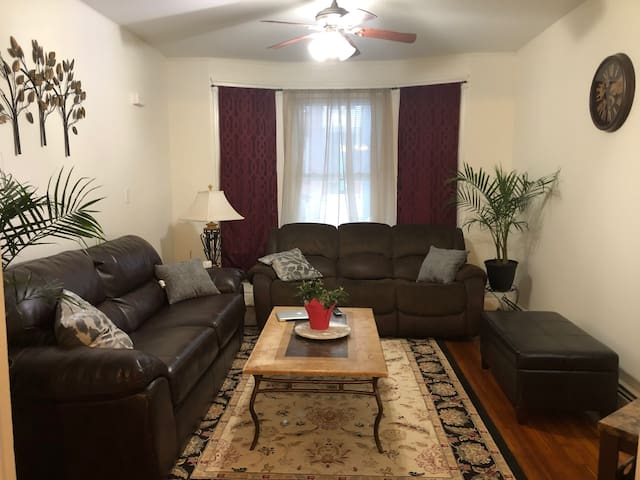 Beautiful Apt in Central Albany