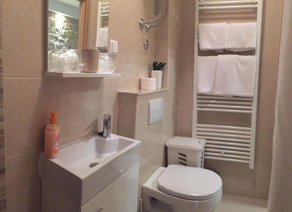 Studio-Apartment Badezimmer